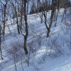 スキー場で使えるカメラ FinePix XP90
